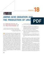 AMINO_ACID_OXIDATION_AND_THE_PRODUCTION.pdf