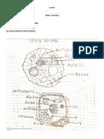 1 parte ciencias.pdf