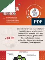 AUDITORIA FORENSE  (2)
