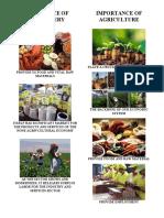 IMPORTANCE OF AGRIFISHERY ARTS (Autosaved)