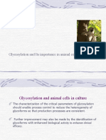 Nutritional Requirements of Animal Cells in Culture-serum