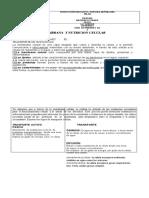 guiano1-150706235250-lva1-app6891.docx