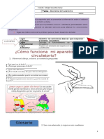 guia-2-sistema-circulatorio1