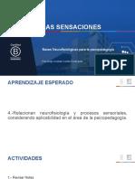 las sensaciones clases del 29-04 bases neurofisiologicas para la psicopedagogia