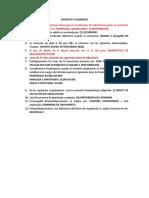 FISIOPATO-3-SEGMENTO