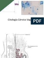 Citologia Exfoliativa Basica