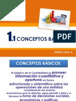 COA_1.1_CONCEPTOS_B_SICOS (1)
