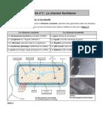 ABM2. Structure bactérienne.pdf