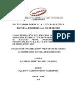 SENTENCIA_ROBO_FLORES_CARRASCO_KATHERINE_LIZBETH.pdf