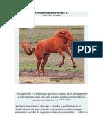 Mechanoresponsiveness 22.pdf