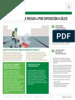 FT_CONDICIÓN NIVEL DE RIESGO 4 POR ExPOSICIÓN A SíLICE.pdf