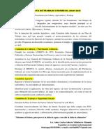 Propuesta a Frepap, Comisiones 2020.pdf