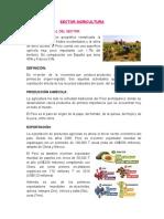 INFORME AGRICULTURA