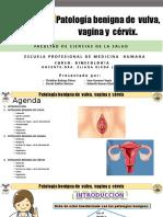 Patología benigna de vulva vagina cervix.pptx