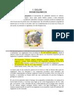 Ciclos_Biogeoquimicos 2