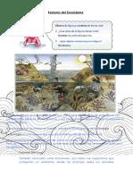 Ciencias Naturales  Individuo, población, comunidad y ecosistema