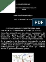1c.EVOLUCION DE LOS SKARNS EN EL TIEMPO Y ESPACIO