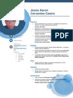 C.V. Cervantes Castro Jesus Aaron.