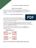 4-Modello a mosaico fluido e fluidità membrane.docx