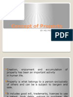 Concept of Property.pptx