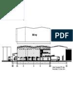 Sectiune transv dpf-anexe.pdf