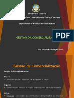 11 - Gestao da comercializacao.pptx