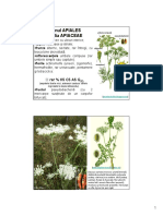 j Subcl. Rosidae c.pdf