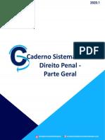 CS - DIREITO PENAL - PARTE GERAL - 2020