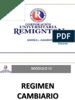 Tema 1 Fund Mdo Cambiario (1)