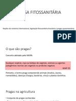 AULA II.pdf