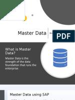 The Master Data