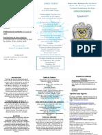 TRIPTICO CANTO_2020.pdf