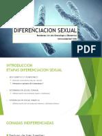 Diferenciacion Sexual (Final)
