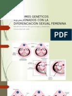 SÍNDROMES GENÉTICOS RELACIONADOS CON LA DIFERENCIACIÓN SEXUAL FEMENINA