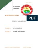 Grado cuarto Ciencias Naturales.docx