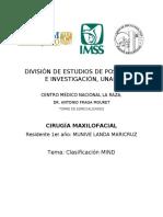 Clasificación MIND.docx