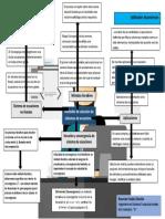 mapa Métodos de solución de sistemas de ecuaciones.docx
