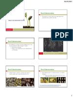 Seed deterioration 2013.pdf
