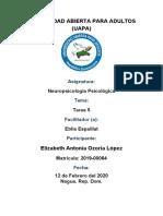 NEUROPSICOLOGIA ELIZABETH OZORIA TAREA 5