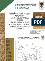 sistemadigestivodeovinosyc-v-100525212319-phpapp02 (1)