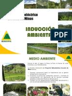 Iducción EDM 2019.pdf