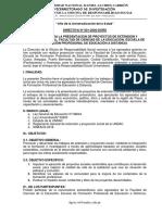 DIRECTIVA N° 01-2020-DORS- PARA LA PRESENTACION DE PROYECTOS -EPD