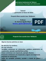 proyecto netbeans base stored procedure.pdf