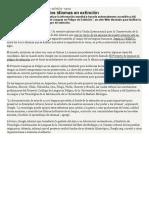 Revista_Ñ-Google_y_lenguas_en_extincion_2