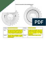 carta amperimetrica ESP.docx