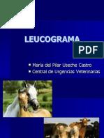 LEUCOGRAMA-convertido