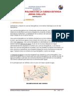 ESTUDIO HIDROLOGICO DE LA CUENCA ESTANCIA