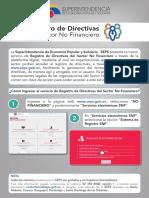 Manual Registro directivas SNF