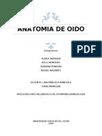 ANATOMIA DE OIDO - OTORRINO