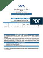 PRA-245  PRACTICA DOCENTE III (1)